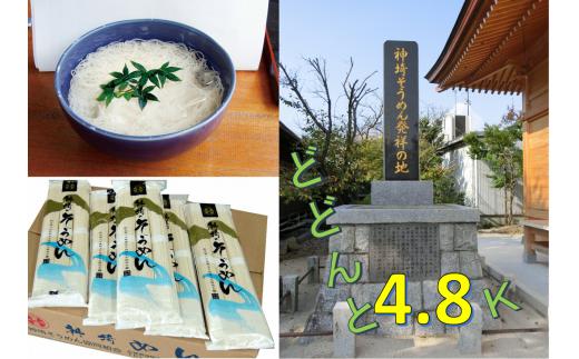 神埼そうめん(240g×20袋)