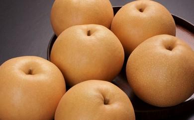 [№5672-0215]白岡の梨「白岡美人」 あきづき梨 5kg
