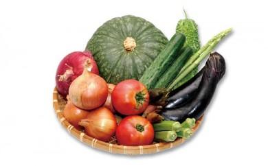 ファーマーズマーケットり菜あん 新鮮な季節の野菜詰め合わせセット