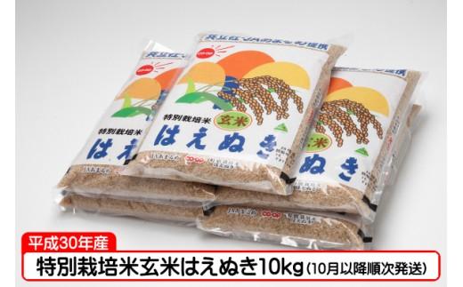 【C-250】特別栽培米玄米はえぬき10kg(10月以降順次発送)