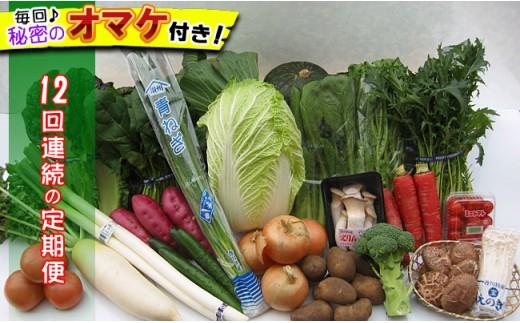 [№5803-0126]【頒布会12回】産直あきんど厳選お野菜と旬の果物の詰め合わせ