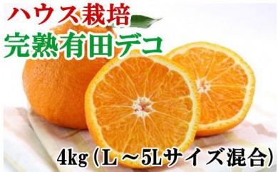 【数量限定】【ハウス栽培】完熟有田デコ(不知火)約4kg(L~5Lサイズ混合)