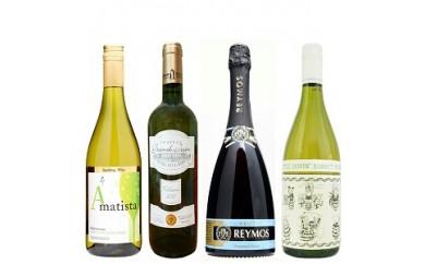 スパークリングワイン・白ワイン4本セット【スペイン産・フランス産】