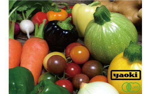 【有機JAS認証】 季節の有機野菜セット(4~5人前)