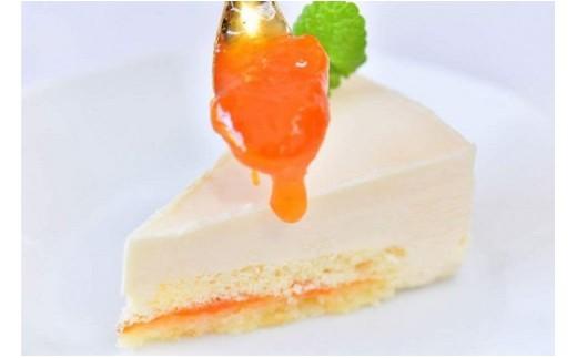 [№5676-0069]あんずの里の爽やかなチーズケーキ