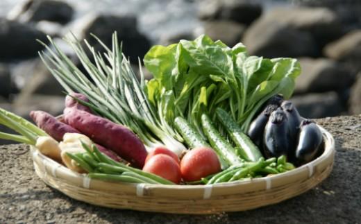 RK067室戸特産プレミアム野菜浜あざみとちょこっと野菜8品セット