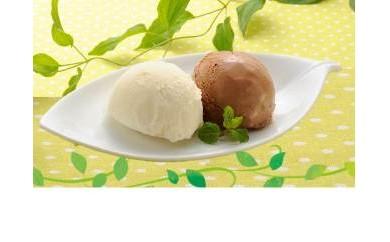【べつかいのアイスクリーム屋さん】1L×2個セット(バニラ・チョコレート)【AA11-C】