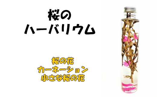 No.1067 ハーバリウム ライトアップ 桜