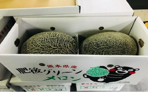 [№5682-0207]八代産フルーツ☆肥後グリーンメロン