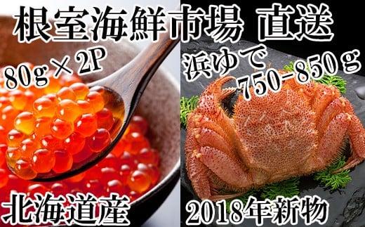 CB-42005 北海道産毛がに750~850g、いくら醤油漬け80g×2本