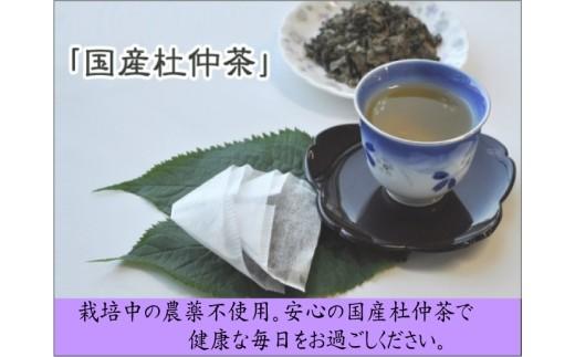B-8 杜仲茶