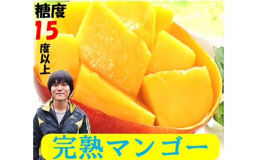 大人気!! 0.-(3)メリーガーデンの完熟マンゴー