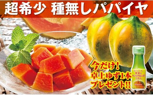 【A43032】国産パパイヤ(今だけ増量+プレゼント付き!)