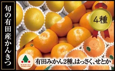 限定数20  旬の有田産かんきつ味わいセット(全4回お届け)【南泰園】