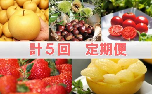C-5.佐川の季節の味 定期便(全5回)
