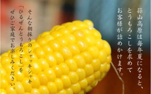 corn7.蒜山高原とうもろこしイエロー20本