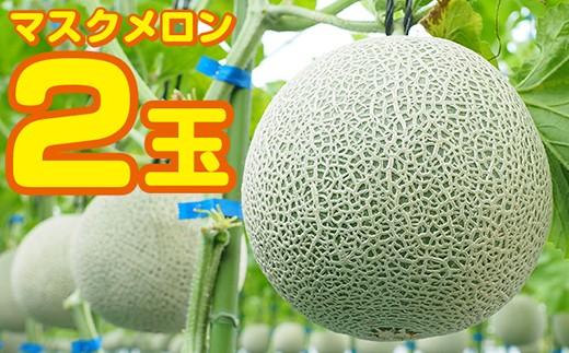 ◇【高品質】白久農園のマスクメロン 2玉