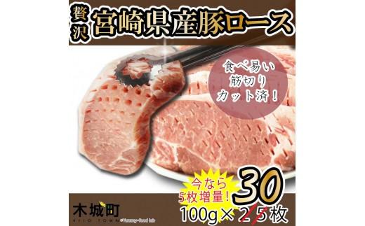 093_sn <贅沢宮崎県産豚肉ロース100gカット25枚+5枚増量>