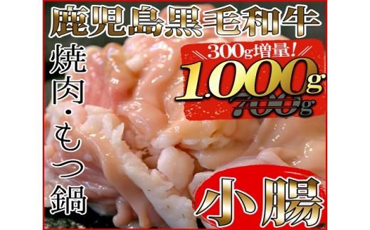 A-479 300g増量☆鹿児島黒毛和牛小腸 700g+増量300g!
