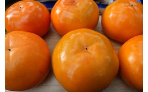 N001 富有柿 2L玉サイズ 約3㎏(12玉入り)【50pt】