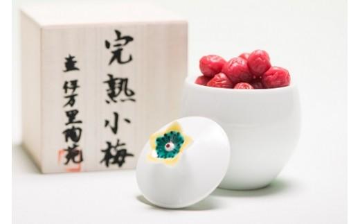 G077伊万里陶苑花摘梅壺
