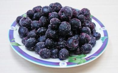 [№5651-0596]冷凍ブルーベリー2kg チャック袋入り(アメリカ産)