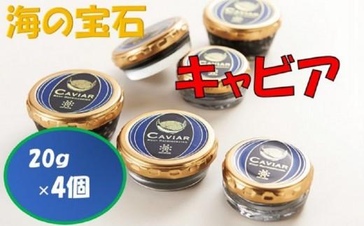 【J-008】キャビア(20g瓶×4)