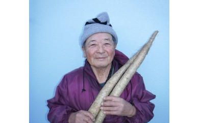 ◆髙木さんの自然薯(やまいも)