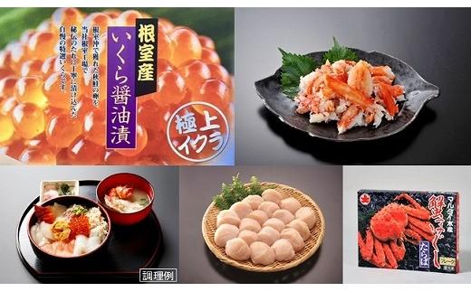 CC-45008 【北海道根室産】根室水揚げ海鮮丼セット