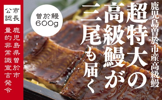 30-B-44 うなぎ蒲焼Bセット(約200g×3尾,タレ・山椒付)