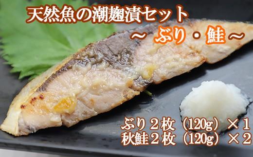 HMG321 天然魚の潮麹漬セット(ぶり・鮭)
