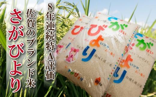 D-117 佐賀県産米「さがびより」 10kg【8年連続特A受賞】