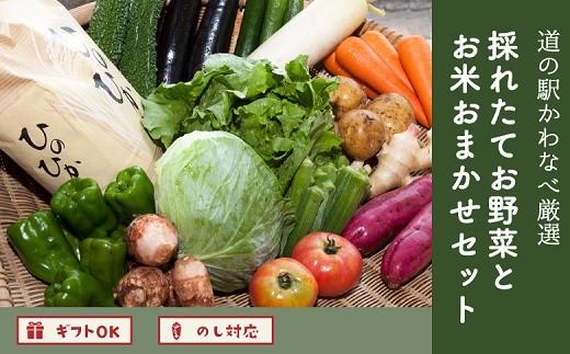 013-05 道の駅から直送!採れたてお野菜とお米おまかせセット