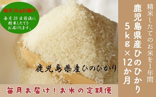013-06 【お米の定期便】鹿児島県産ひのひかり5kg×12か月!精米したてのお米を1年間お届けします。