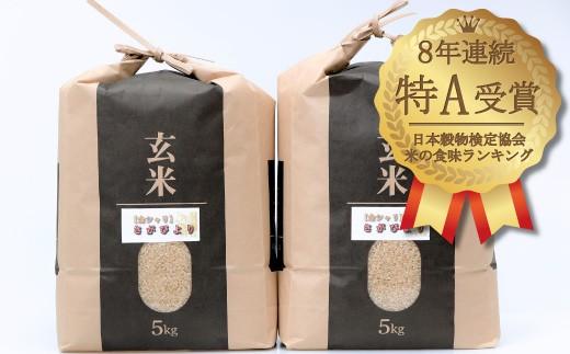 C-111 佐賀県産米「さがびより(玄米)」 最上級厳選!!10kg【8年連続特A受賞】