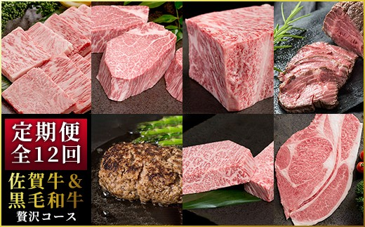 YG015 [定期便全12回]佐賀牛&九州産黒毛和牛「贅沢コース」