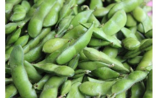[A022]大粒・風味豊かな新品種!新潟えだまめ(茶豆)1.5㎏