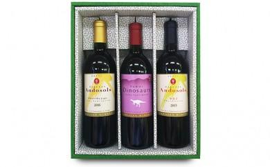 [№5884-0197]Andosols赤ワイン&恐竜ワインセット(11月~6月発送)