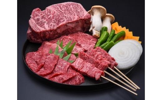 《夏季限定》飛騨牛BBQセット もも焼肉用 300g 上カルビ 焼肉用 300g 牛串 10本セット バーベキュー 牛肉 和牛[E0021]