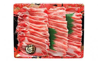 [№5541-0005]阿波とん豚ローススライス(約700g)