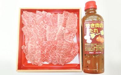 [№5541-0032]阿波育ち和牛肉400gと焼肉のたれセット