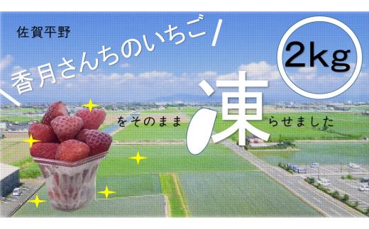 フローズンいちご(さがほのか)
