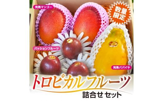 AB4 トロピカルフルーツ詰合せセット