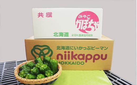 47  【北海道新冠産】ピーマンかぼちゃセット 13,000円