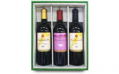 [№5884-0196]Andosols赤ワイン&恐竜ワインセット(7月~10月発送)