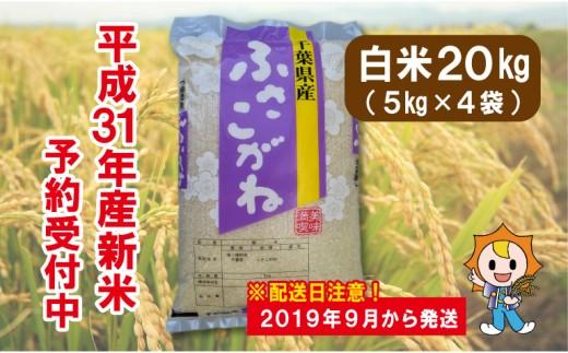 E01-002 長生産ふさこがね(白米20kg)平成31年産新米 ※来年配送