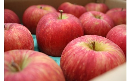 10月から3月の限定品!美味しいりんごをお届けします。