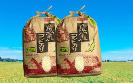 魚沼産コシヒカリ10kg(5kg×2袋)