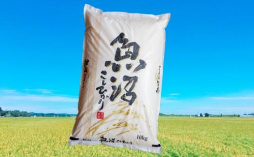 【C3001】魚沼産コシヒカリ10kg