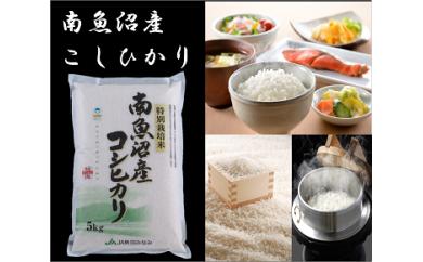 【29年産】選ばれた匠がつくる「特別栽培米8割減」5kg